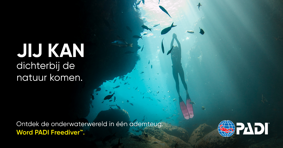 NL-11Freediver1-Blog-Post-1200x600